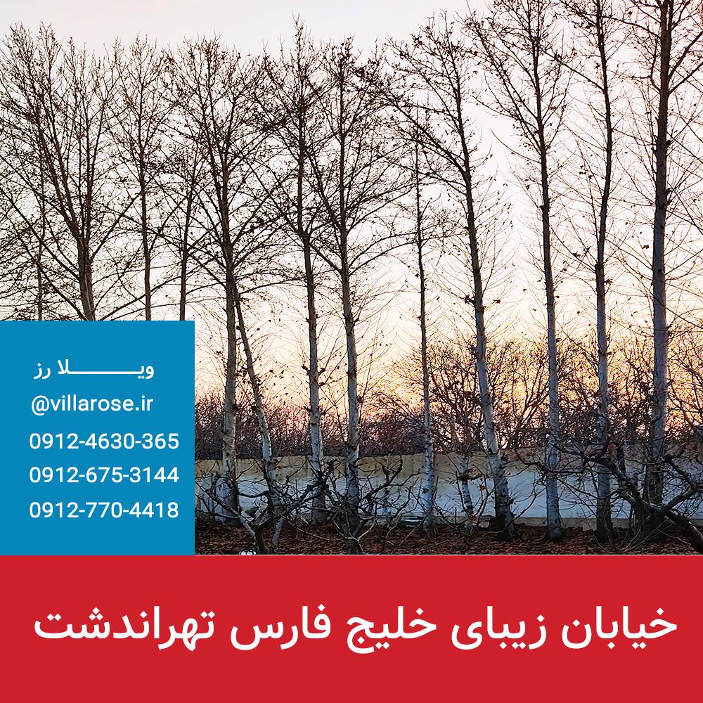 خیابان خلیج فارس تهراندشت