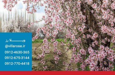 بهار در سرخاب